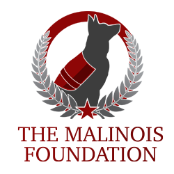Dog Training Elite Gilbert - The Malinois Foundation