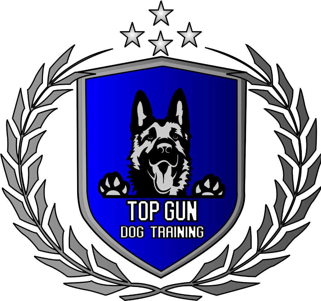 Dog Training Elite Denver - Top Gun Dog