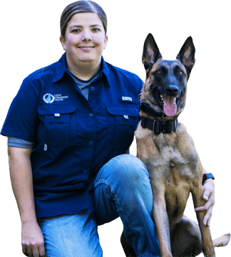 dog training franchise